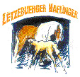 Logo - Stud-Book Luxembourgeois Pour Chevaux Haflinger asbl